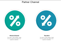 Partner Channel Ppt PowerPoint Presentation Inspiration Format Cpb