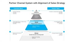 Partner Channel System With Alignment Of Sales Strategy Ppt Slides Example Topics PDF