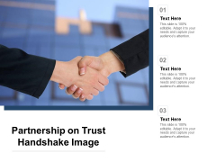 Partnership On Trust Handshake Image Ppt PowerPoint Presentation Styles Example
