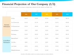 Payment Processor Financial Projection Of Our Company Net Demonstration PDF