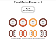 Payroll System Management Ppt PowerPoint Presentation Professional Inspiration