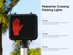 Pedestrian Crossing Flashing Lights Ppt PowerPoint Presentation Styles Visuals