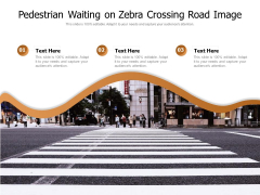 Pedestrian Waiting On Zebra Crossing Road Image Ppt PowerPoint Presentation Gallery Icons PDF