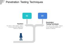 Penetration Testing Techniques Ppt PowerPoint Presentation Ideas Professional Cpb