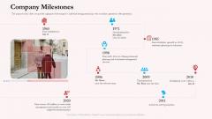 Pension Plan Company Milestones Ppt Portfolio Tips PDF
