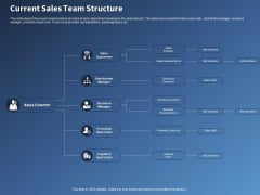 Performance Assessment Sales Initiative Report Current Sales Team Structure Ppt Professional Ideas PDF