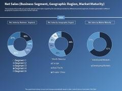 Performance Assessment Sales Initiative Report Net Sales Business Segment Geographic Region Market Maturity Information