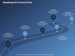 Performance Assessment Sales Initiative Report Roadmap For Process Flow Ppt Show Guidelines PDF