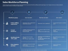 Performance Assessment Sales Initiative Report Sales Workforce Planning Ppt Show Background Designs PDF