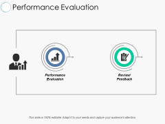 Performance Evaluation Ppt PowerPoint Presentation File Picture