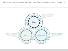 Performance Measurement Process Sample Presentation Graphics
