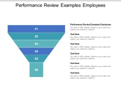 Performance Review Examples Employees Ppt PowerPoint Presentation Ideas Mockup