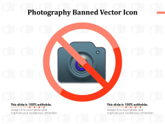 Photography Banned Vector Icon Ppt PowerPoint Presentation Styles Master Slide PDF