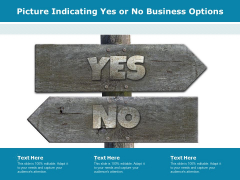 Picture Indicating Yes Or No Business Options Ppt PowerPoint Presentation Styles Elements PDF