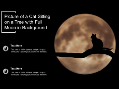 Picture Of A Cat Sitting On A Tree With Full Moon In Background Ppt PowerPoint Presentation Model Information