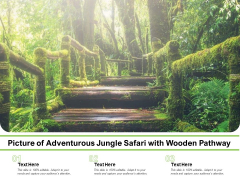 Picture Of Adventurous Jungle Safari With Wooden Pathway Ppt PowerPoint Presentation Outline Background Images PDF