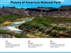Picture Of American National Park Ppt PowerPoint Presentation Show Shapes PDF