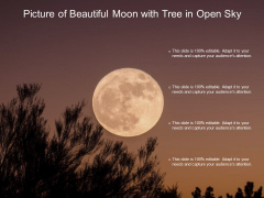Picture Of Beautiful Moon With Tree In Open Sky Ppt PowerPoint Presentation Icon Show