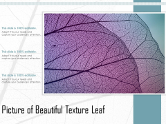Picture Of Beautiful Texture Leaf Ppt PowerPoint Presentation Styles Model PDF