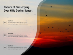 Picture Of Birds Flying Over Hills During Sunset Ppt PowerPoint Presentation Gallery Slide Download PDF