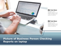 Picture Of Business Person Checking Reports On Laptop Ppt PowerPoint Presentation Styles Graphic Images