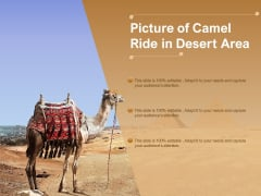 Picture Of Camel Ride In Desert Area Ppt PowerPoint Presentation Layouts Smartart PDF