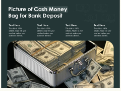 Picture Of Cash Money Bag For Bank Deposit Ppt PowerPoint Presentation Gallery Introduction PDF