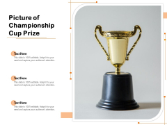 Picture Of Championship Cup Prize Ppt PowerPoint Presentation Icon Outline PDF