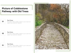 Picture Of Cobblestone Pathway With Old Trees Ppt PowerPoint Presentation Outline Slides PDF