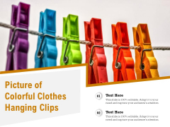 Picture Of Colorful Clothes Hanging Clips Ppt PowerPoint Presentation File Rules PDF