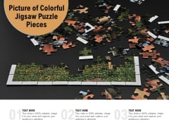 Picture Of Colorful Jigsaw Puzzle Pieces Ppt PowerPoint Presentation Portfolio Skills