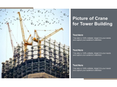 Picture Of Crane For Tower Building Ppt PowerPoint Presentation Styles Designs Download