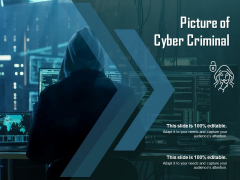 Picture Of Cyber Criminal Ppt PowerPoint Presentation Infographics Graphics Template