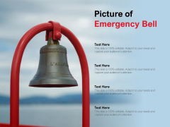 Picture Of Emergency Bell Ppt Powerpoint Presentation Model Elements
