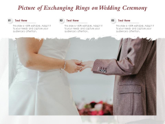 Picture Of Exchanging Rings On Wedding Ceremony Ppt PowerPoint Presentation Infographic Template Files PDF