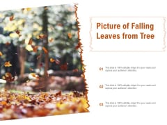 Picture Of Falling Leaves From Tree Ppt PowerPoint Presentation Ideas Samples