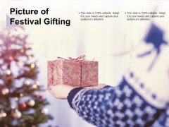 Picture Of Festival Gifting Ppt PowerPoint Presentation Show Graphics