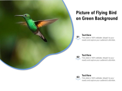 Picture Of Flying Bird On Green Background Ppt PowerPoint Presentation Icon Show PDF