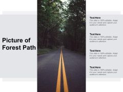 Picture Of Forest Path Ppt PowerPoint Presentation Portfolio Examples