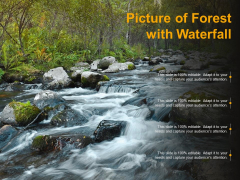Picture Of Forest With Waterfall Ppt PowerPoint Presentation Ideas