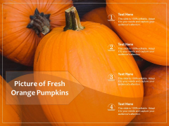Picture Of Fresh Orange Pumpkins Ppt PowerPoint Presentation File Vector PDF