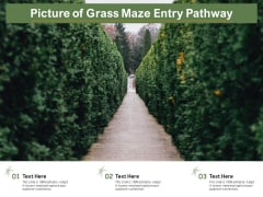 Picture Of Grass Maze Entry Pathway Ppt PowerPoint Presentation Layouts Design Templates PDF