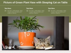 Picture Of Green Plant Vase With Sleeping Cat On Table Ppt PowerPoint Presentation Styles Example Topics PDF