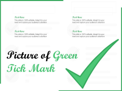 Picture Of Green Tick Mark Ppt PowerPoint Presentation File Grid