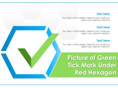 Picture Of Green Tick Mark Under Red Hexagon Ppt PowerPoint Presentation Icon Master Slide