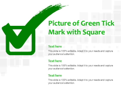 Picture Of Green Tick Mark With Square Ppt PowerPoint Presentation File Structure
