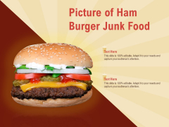 Picture Of Ham Burger Junk Food Ppt PowerPoint Presentation Icon Files