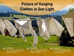 Picture Of Hanging Clothes In Sun Light Ppt PowerPoint Presentation File Layout Ideas PDF