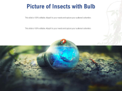 Picture Of Insects With Bulb Ppt PowerPoint Presentation Professional Slides PDF