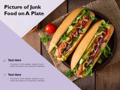 Picture Of Junk Food On A Plate Ppt PowerPoint Presentation Infographic Template Infographics